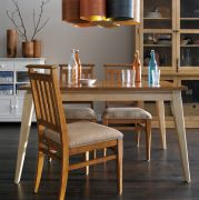 D911  Dining Set (1 Table + 4 Chairs)