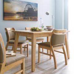 Dotori-4  Dining Set (1 Table + 4 Chairs)